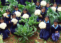 Children with cauliflowers
